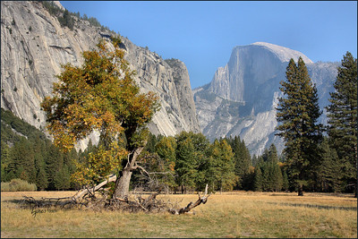 Netgarden > Yosemite October 2007 Infrareds and Landscapes photo